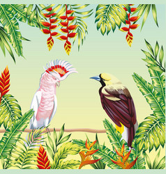 tropical birds frame leaves and flowers vector image