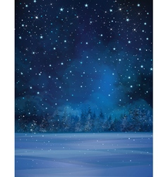 Winter night stars vector