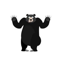 baribal surprised emoji american black bear vector image vector image