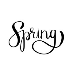 spring brush lettering vector image vector image