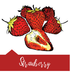A strawberry vector