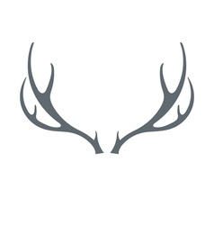 deers horns icon vector image