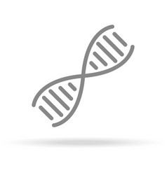 dna genetics icon in trendy thin line style vector image