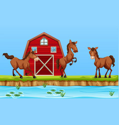 Horses in front of red barn vector