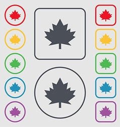 Maple leaf icon symbols on the round and square vector
