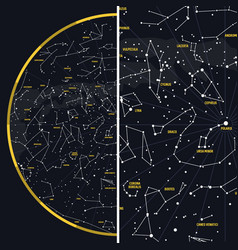 Night sky with constellations vector