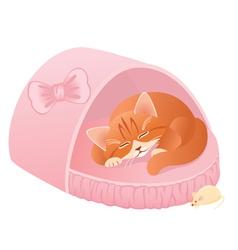 Sleeping kitten vector image