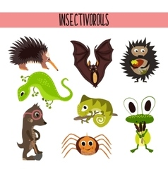 Cartoon Set of Cute Animals insectivores living in vector image