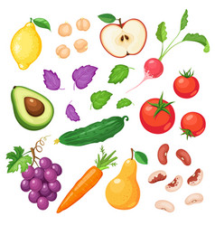 fresh vegetables and fruits vector image