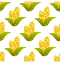 Seamless pattern of fresh corns vector image