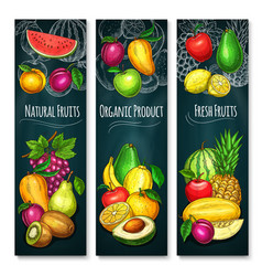 exotic fresh fruits product banners set vector image