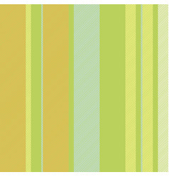 multicolor stripe abstract seamless pattern vector image vector image