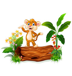 Cute baby tiger posing on tree stump vector