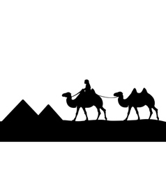 The man on the camel of the pyramids vector
