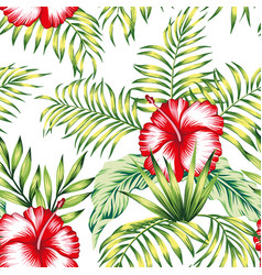 tropical botanical composition hibiscus palm vector image