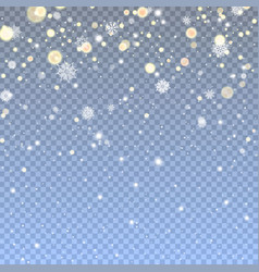 falling snow in transparent background vector image