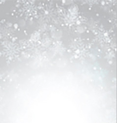 silver christmas snowflake background 1111 vector image vector image