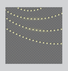 christmas lights on rope isolated vector image