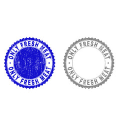 Grunge only fresh meat scratched watermarks vector