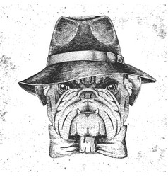Hipster animal bulldog with hat vector