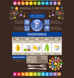 Phosphorus mineral vitamin supplement rich food vector
