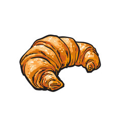 Sketch fresh french croissant isolated vector