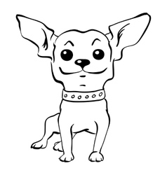 Sketch funny chihuahua dog sitting vector