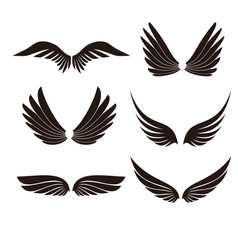 wings icons set on white background for graphic vector image