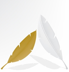 Feather gold and white vector