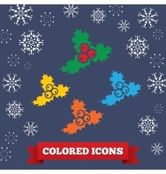 Holly berry icon christmas symbol colored vector