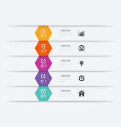 Infographics five options vector