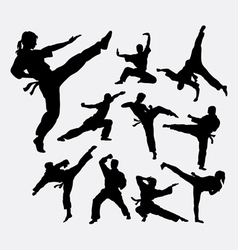 Martial art 2 male and female silhouettes vector