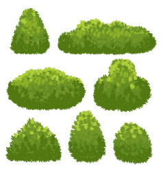 nature hedge garden green bushes cartoon shrub vector image