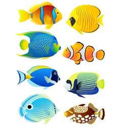 set tropical fish vector image