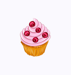 Vanilla cupcake with red berry whipped cream vector