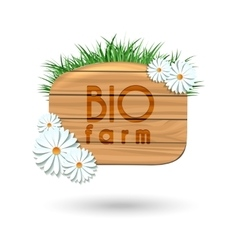Wood panel banner with camomile flowers vector image