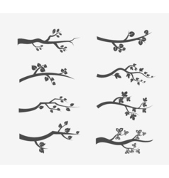 tree branches silhouette with leaves vector image vector image