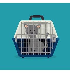 Pet animal design vector image