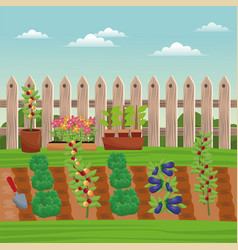 vegetable field farm fence vector image
