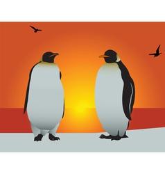 Antarctica penguins vector