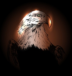 Background with drawing eagle vector