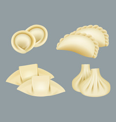 dumplings products from dough wontons manti vector image
