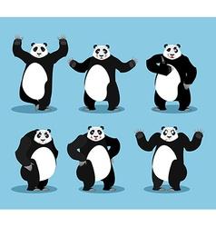 Panda set Chinese bear variety of poses Animal vector