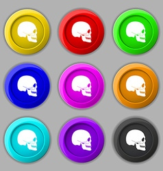 Skull icon sign symbol on nine round colourful vector image
