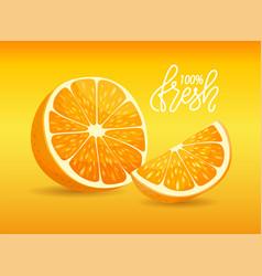 slice citrus yellow fruit fresh orange vector image