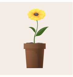 yellow flower in clay pot isolated vector image