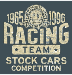 Stock car racing team vector image vector image