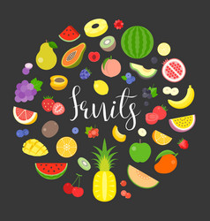 Colourful fruits and berry vector
