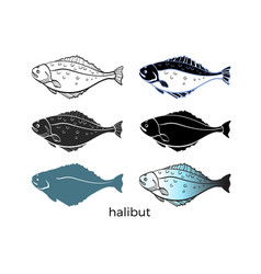 halibut set vector image