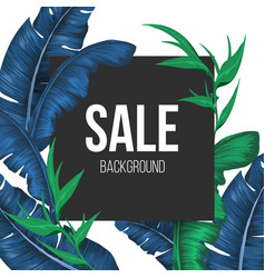 sale promo banner background with exotic plants vector image